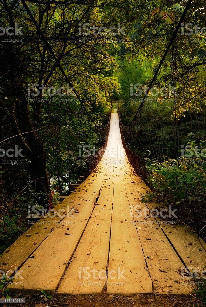 A wooden suspension bridge through dense greenery royalty-free stock photo