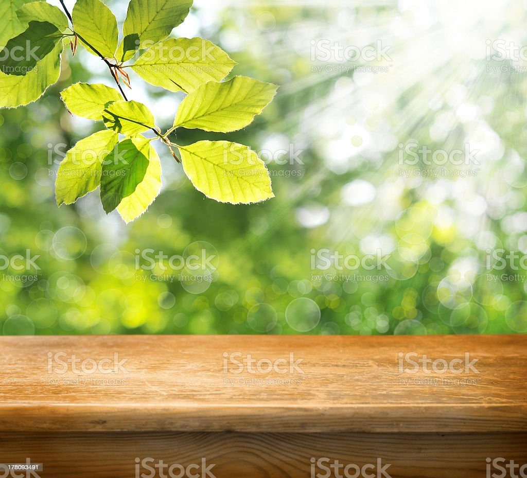 Wooden table sitting below a tree royalty-free stock photo