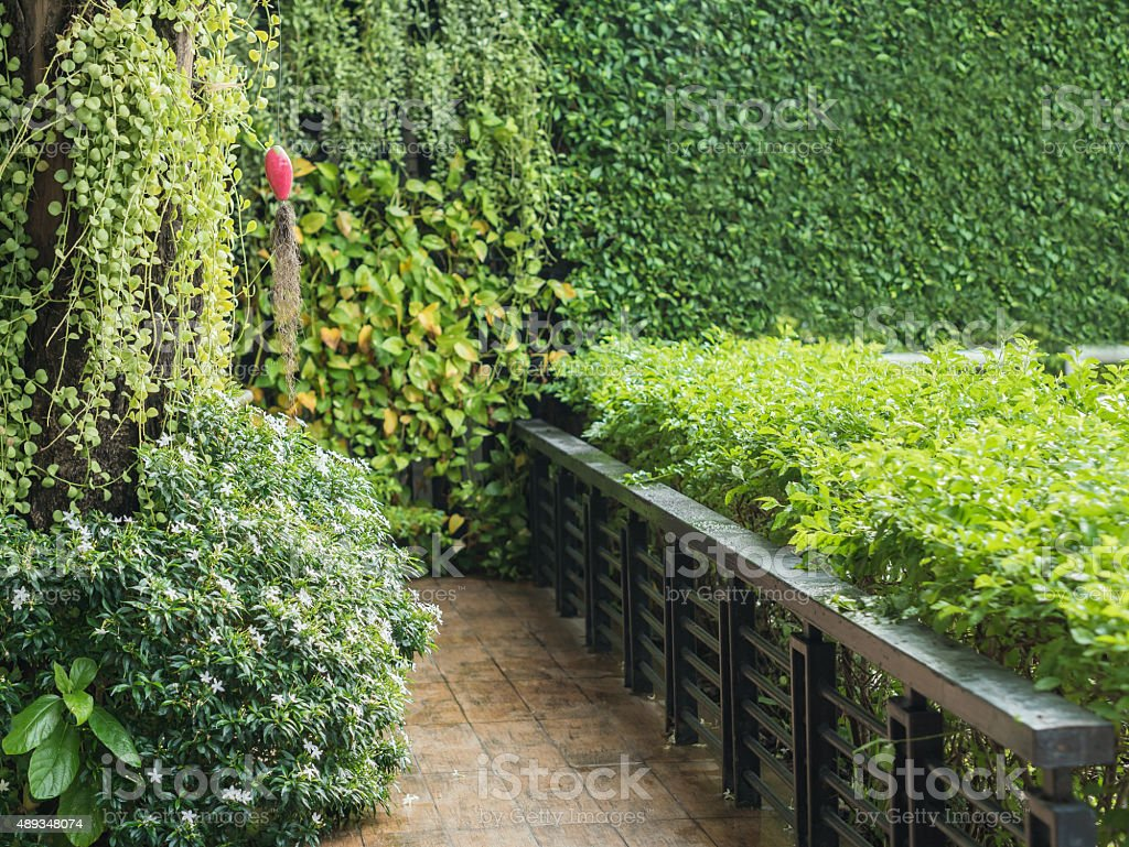 Wooden terrace with green trees outside. royalty-free stock photo