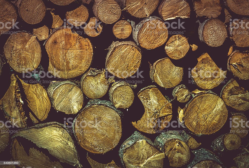 Wooden texture with pile of tree trunks stock photo