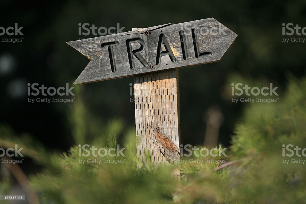 A wooden trail sign in the forest  royalty-free stock photo