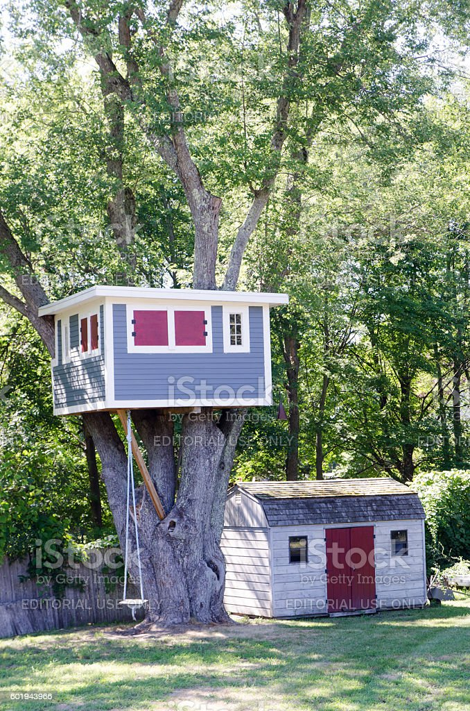 Wooden Tree house built in a tree stock photo