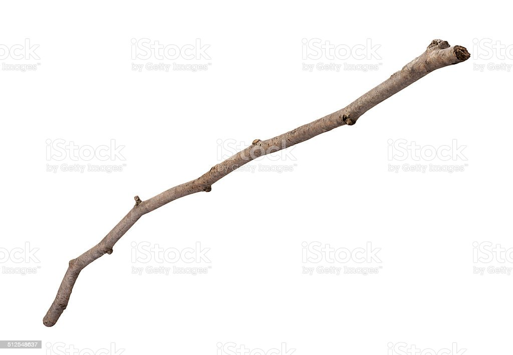 Wooden Twig Isolated stock photo