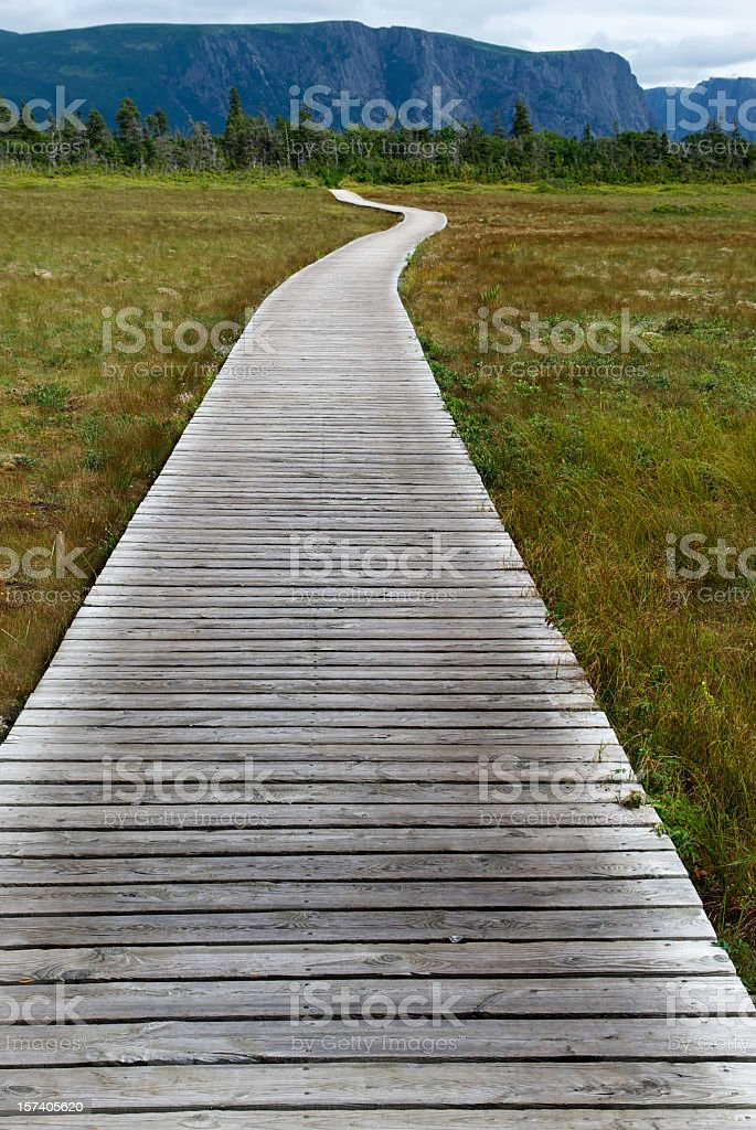 Wooden walking path stock photo