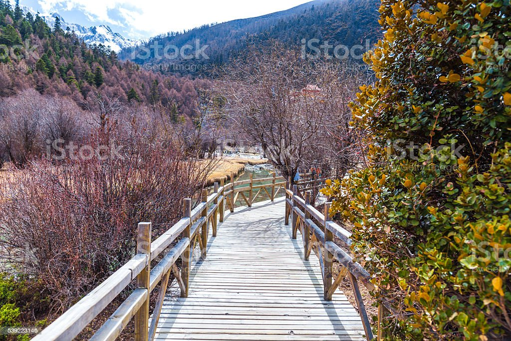 Wooden walkway along the lake, with pine trees and mountains stock photo