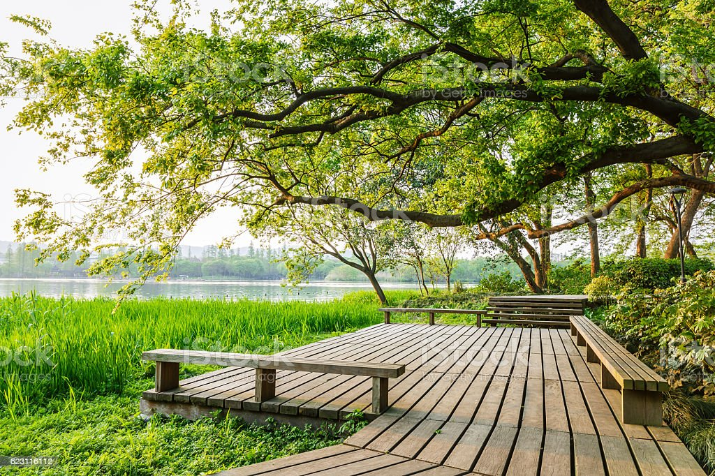 wooden walkway and green natural scenery stock photo