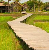 Wooden Walkway in Cambodia