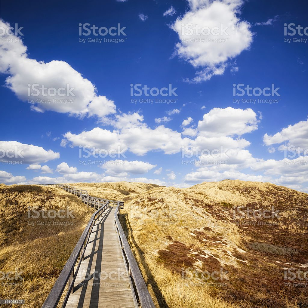 Wooden Walkway on the Dunes of Sylt stock photo