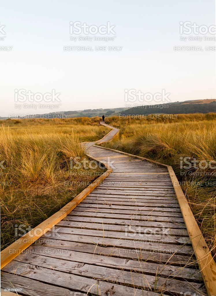 Wooden walkway through wildlife conservation area. stock photo