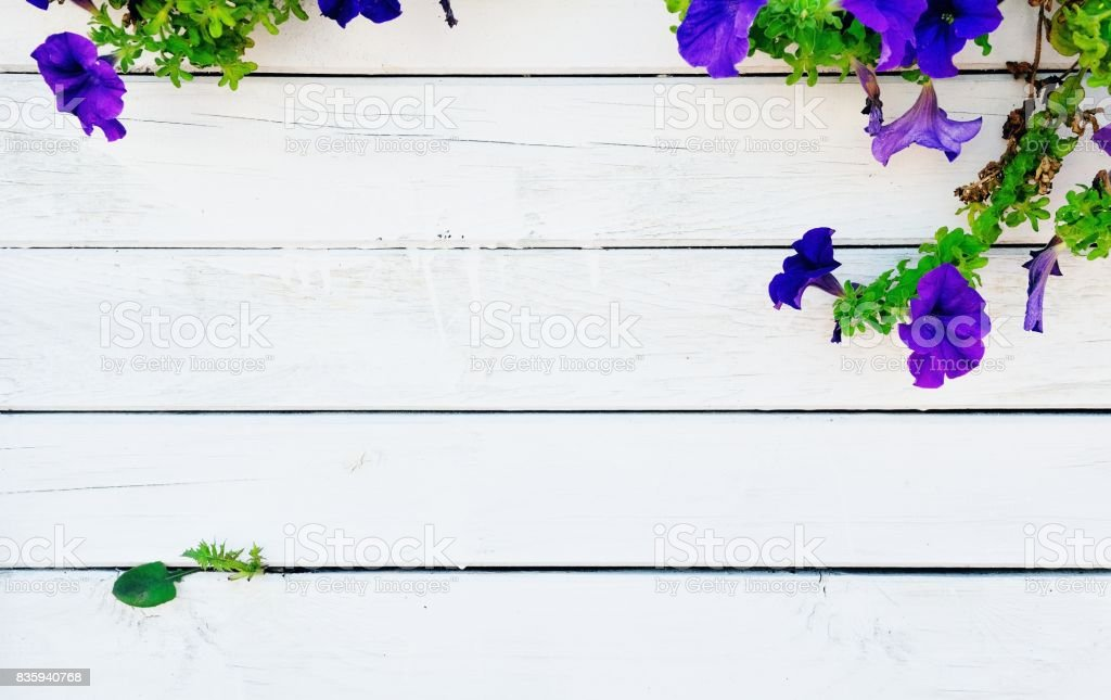 Wooden wall with decorative flowers stock photo