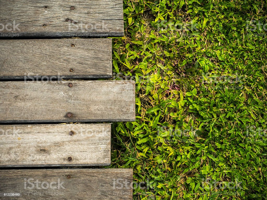 wooden with green grass stock photo
