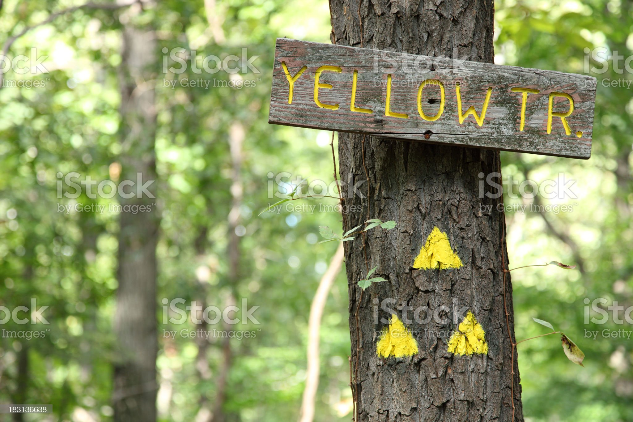 Wooden Yellow Trail sign and trail marker triangles royalty-free stock photo