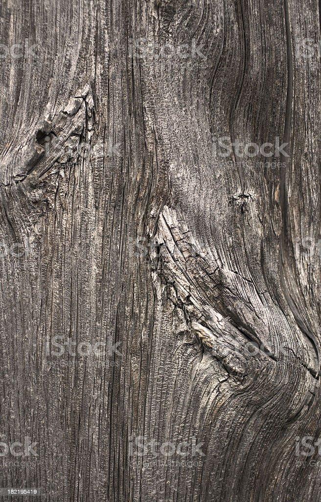 woodgrain royalty-free stock photo