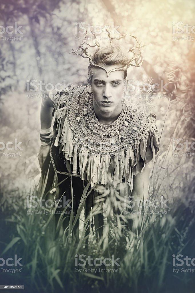 Woodland Fairy King stock photo