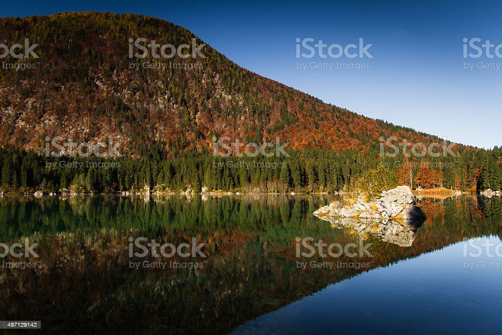 Woodland reflection stock photo
