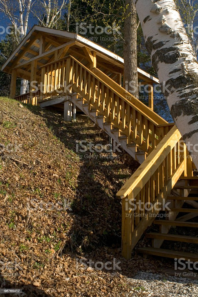 Woodland Stair Case stock photo