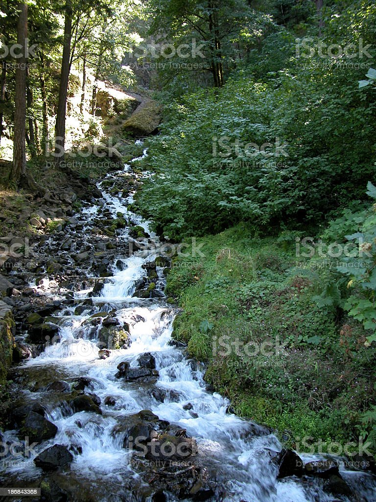 A woodland stream flowing over rocks royalty-free stock photo