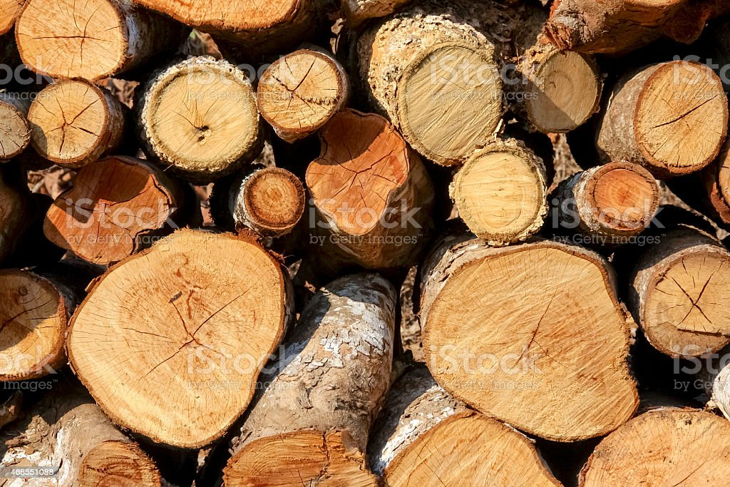 Woodpile closeup outdoor royalty-free stock photo