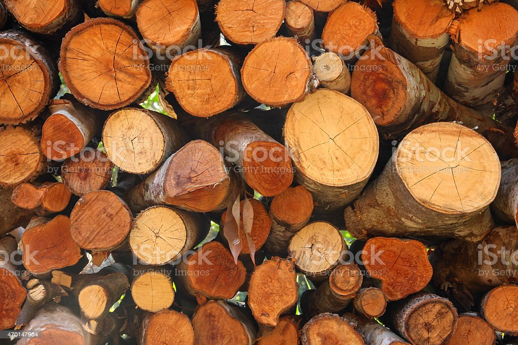 Woodpile closeup royalty-free stock photo