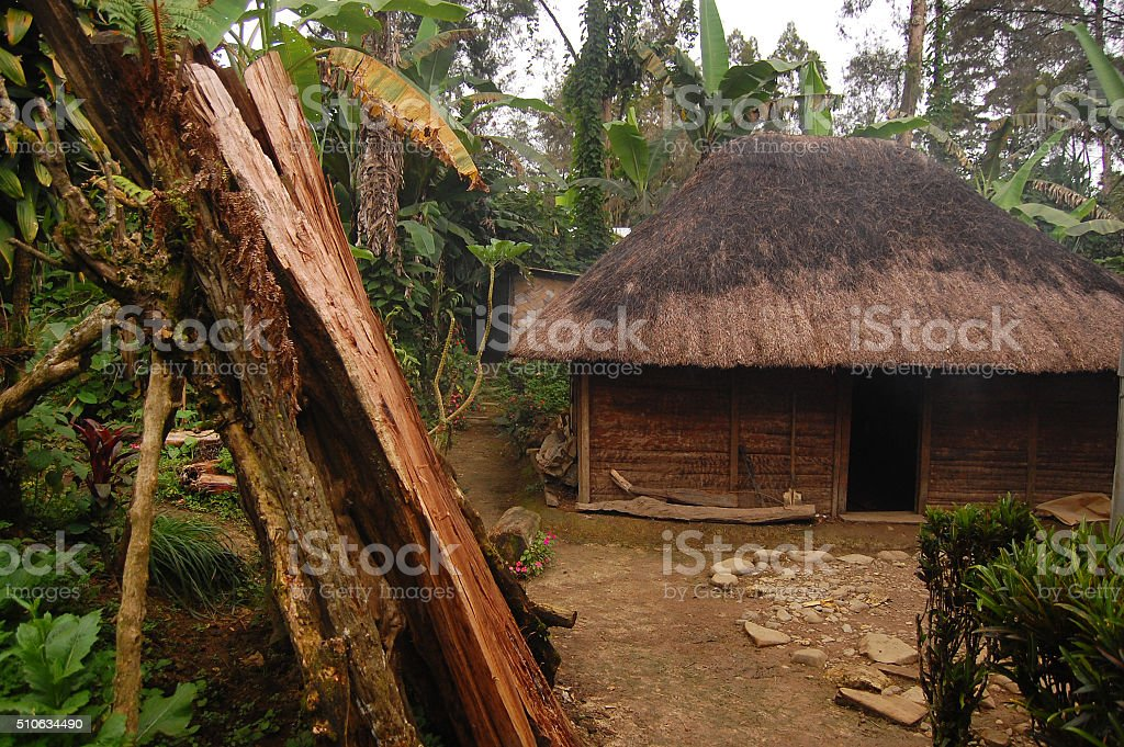 Woodpile near village house at rural area stock photo
