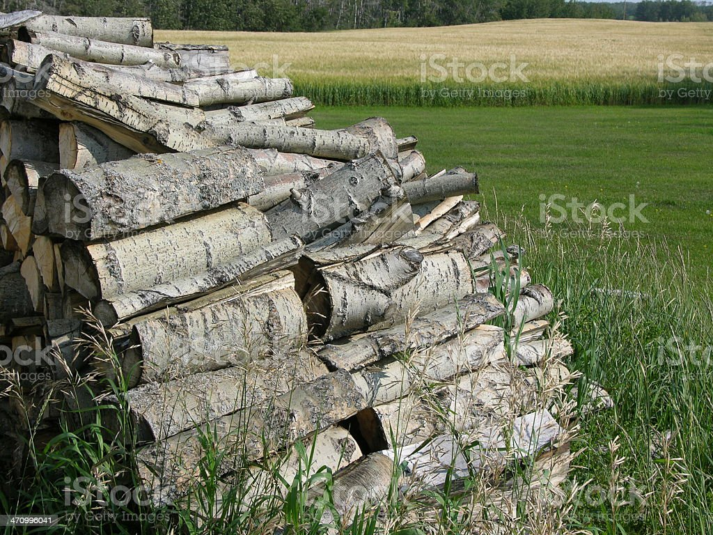 Woodpile next to field royalty-free stock photo