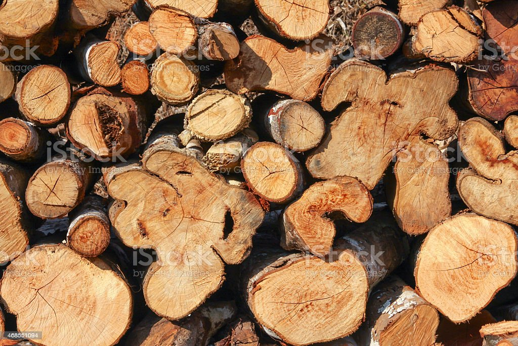 Woodpile with different shape outdoor royalty-free stock photo