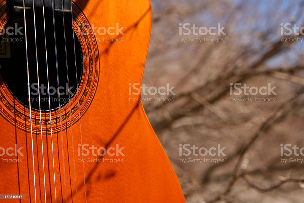 Woods Guitar royalty-free stock photo