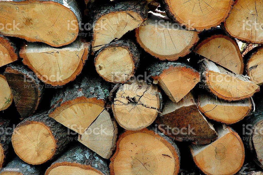 Woods! royalty-free stock photo