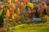 woodshed on the hillside in autumn mountains