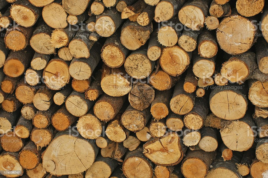 Woodshed with logs cut and perfectly aligned for heating during royalty-free stock photo