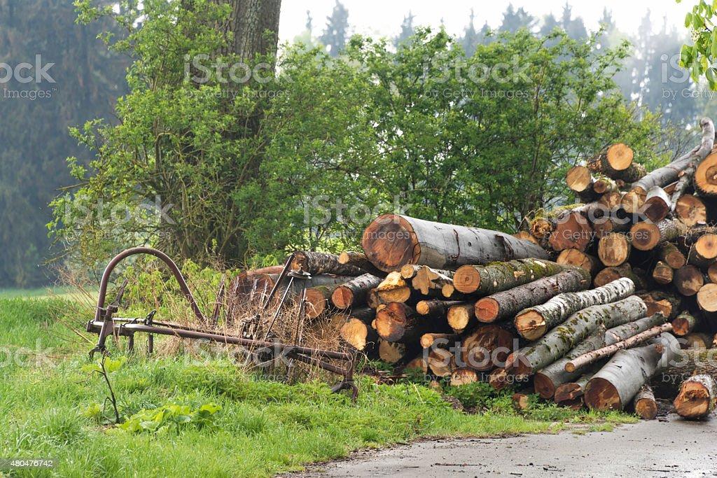 Woodstack stock photo
