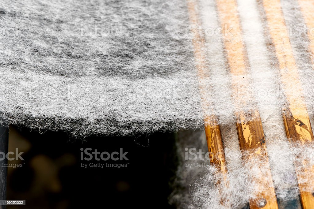 Wool production stock photo