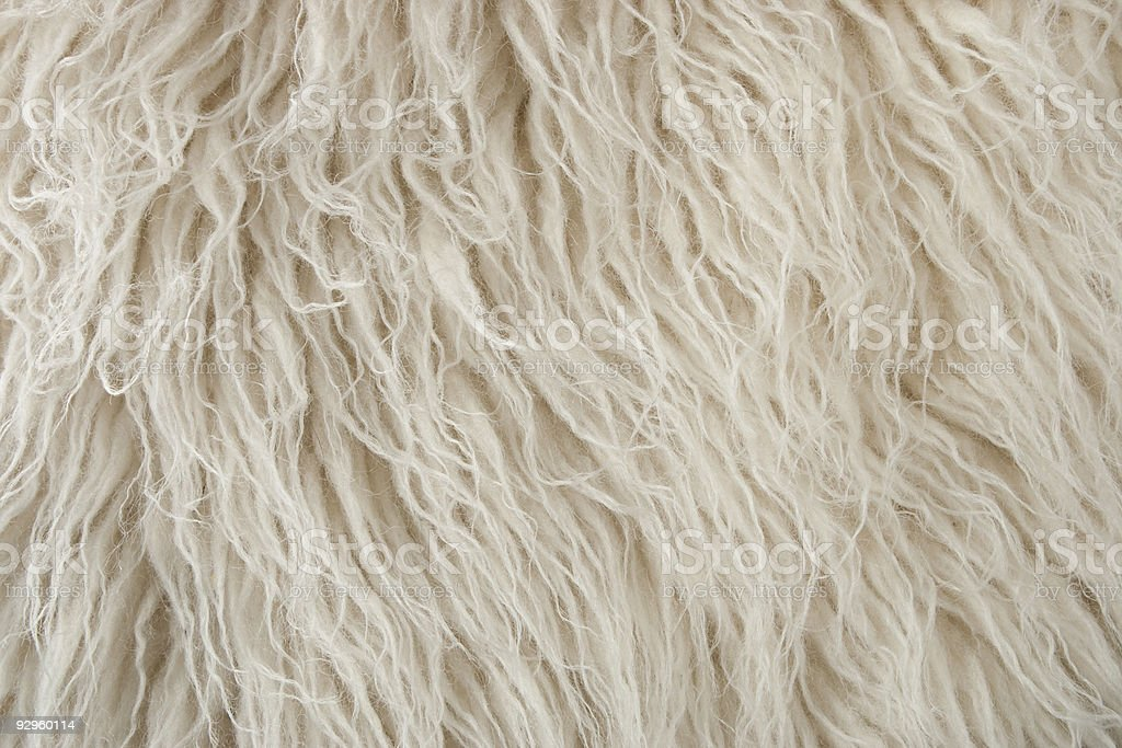 Wool Rug Close Up stock photo