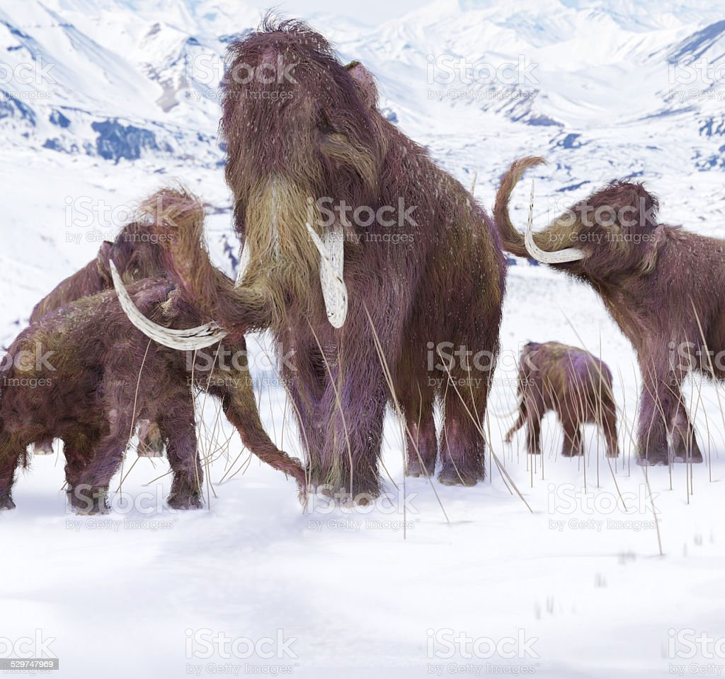 Woolly Mammoth Family stock photo