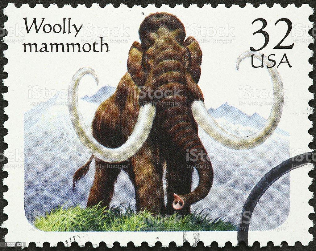 woolly mammoth royalty-free stock photo