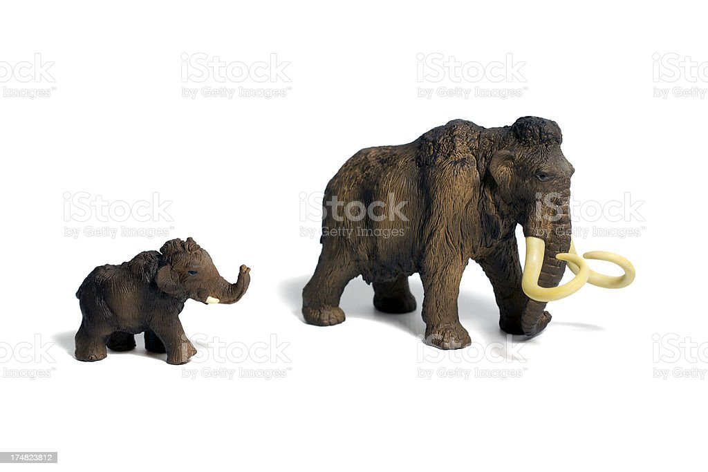 Wooly Mammoth and Young stock photo
