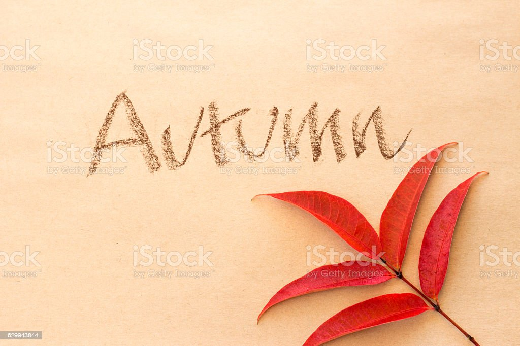 Word 'Autumn' and red leaves on brown sketchbook stock photo