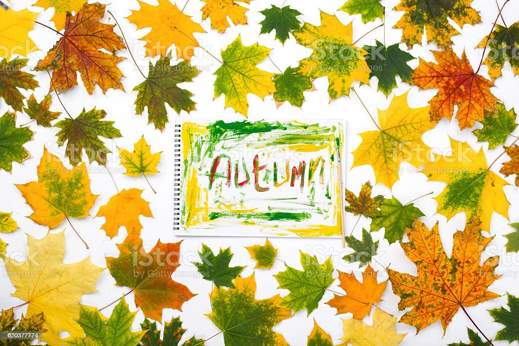 Word autumn in an album with autumn leaves stock photo