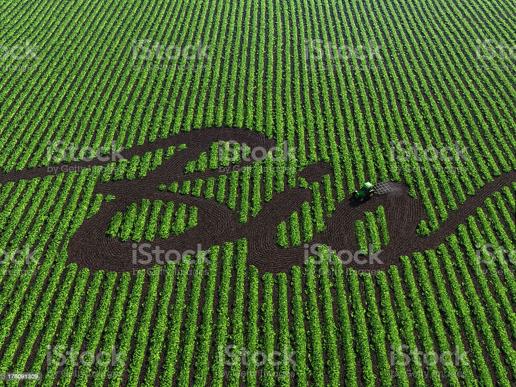 word bio on the cultivated land stock photo