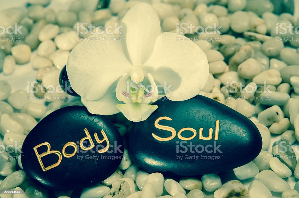 word body and soul and white orchid stock photo