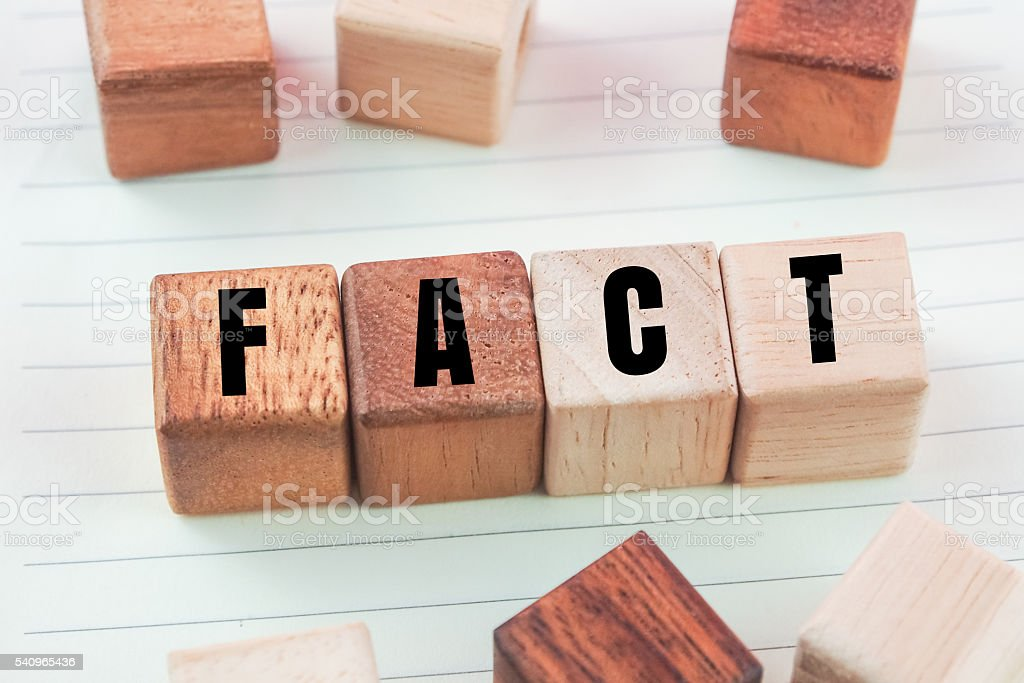 word fact on wood cubes stock photo