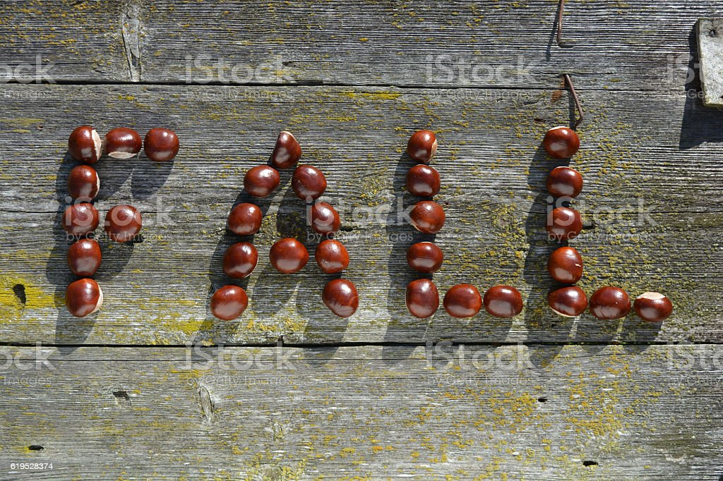 Word FALL made of chestnuts on wooden background stock photo