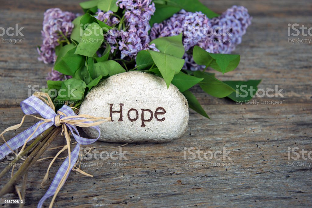 word hope on rock with lilacs stock photo