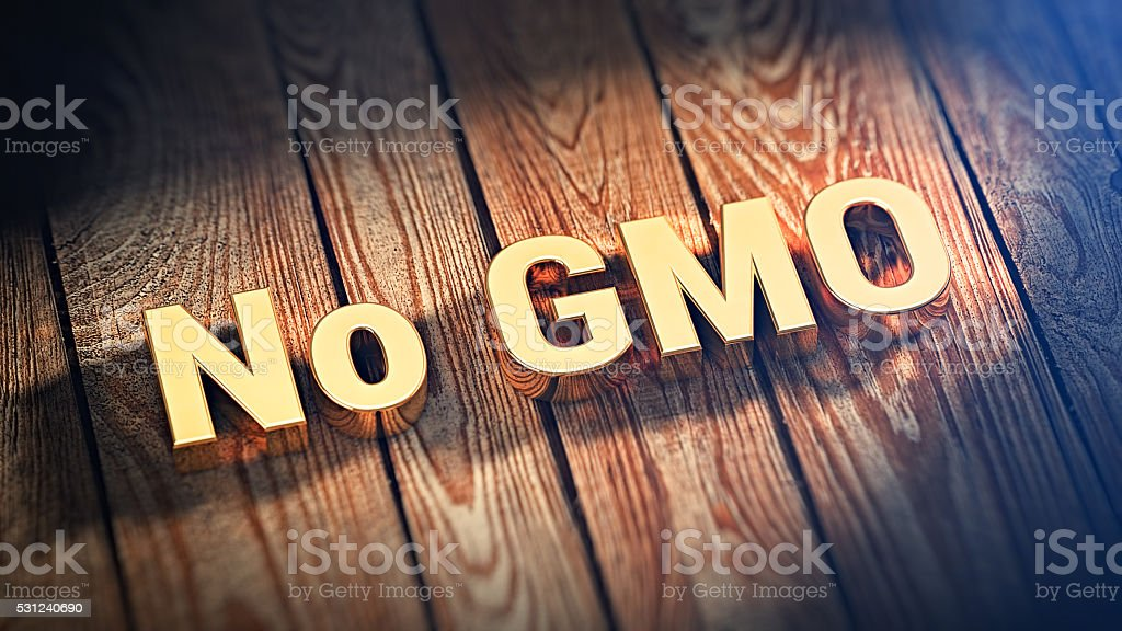 Word No GMO on wood planks stock photo