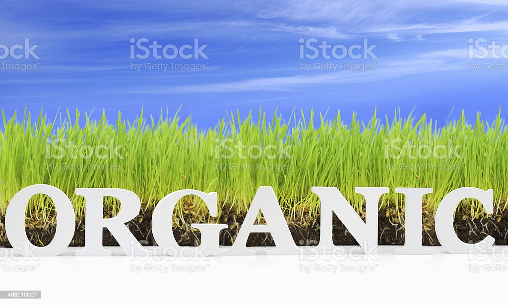 Word 'Organic' with fresh grass and blue sky stock photo