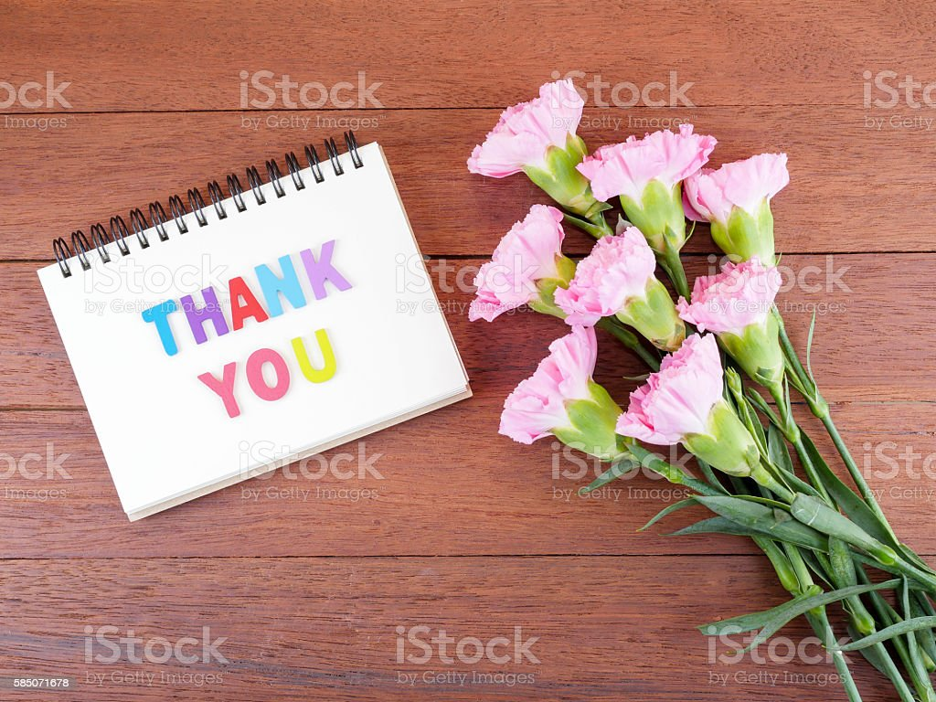 Word spell Thank you and Carnation flower 2 stock photo