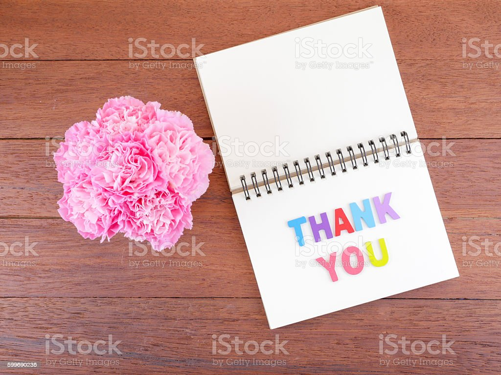 Word spell Thank you and Carnation flower 6 stock photo