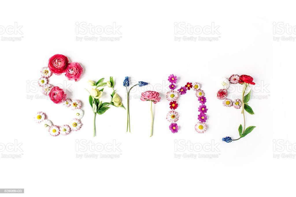 word spring isolated on white stock photo