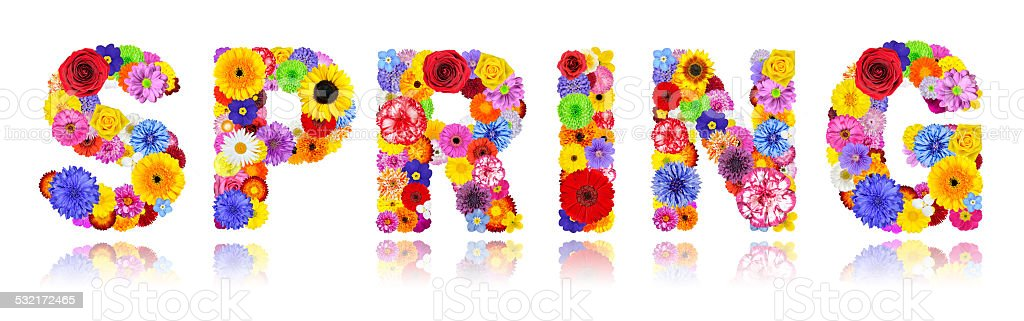 Word Spring Made of Colorful Flowers Isolated on White stock photo