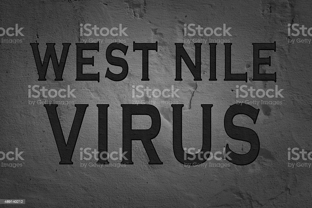 Word West Nile Virus stock photo